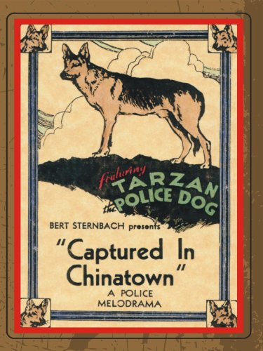 image Captured in Chinatown Watch Full Movie Free Online