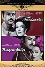 Primary image for Bugambilia