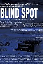 Blind Spot (2008) Poster