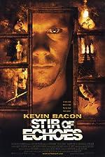 Stir of Echoes(1999)