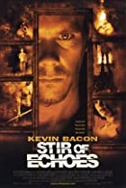 Image of Stir of Echoes