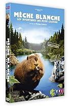 Image of Mèche Blanche, les aventures du petit castor