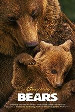 Bears(2014)