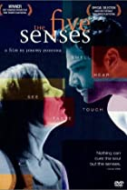 Image of The Five Senses