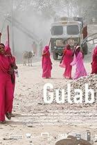 Image of Gulabi Gang