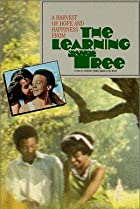 Image of The Learning Tree