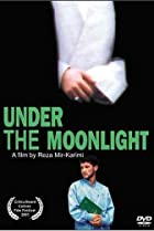 Image of Under the Moonlight