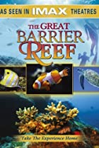 Image of Great Barrier Reef