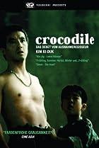 Image of Crocodile