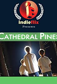 Cathedral Pines Poster
