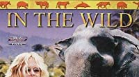 White Elephants with Meg Ryan