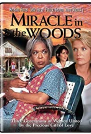 Miracle in the Woods(1997) Poster - Movie Forum, Cast, Reviews