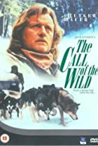 The Call of the Wild: Dog of the Yukon (1997) Poster