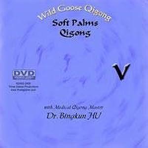 The Door 2007 CN DVDSCR Xvid-bIgOx