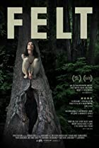 Image of Felt