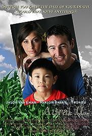 Aura, IL Poster