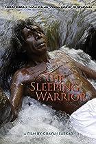 Image of The Sleeping Warrior