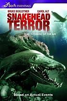 Image of Snakehead Terror