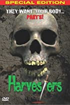 Image of Harvesters