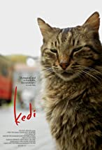 Primary image for Kedi