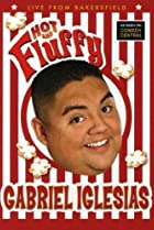 Image of Gabriel Iglesias: Hot and Fluffy