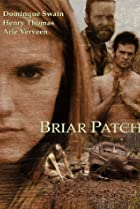Image of Briar Patch