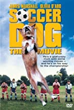 Primary image for Soccer Dog: The Movie