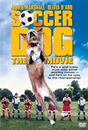 Soccer Dog: The Movie (1999) Poster - Movie Forum, Cast, Reviews