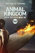 Image of Animal Kingdom