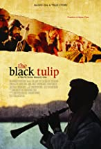 Primary image for The Black Tulip