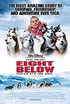 Image of Eight Below