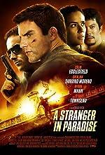 A Stranger in Paradise(2013)