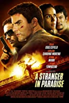 Image of A Stranger in Paradise