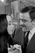 Image of The Addams Family: The Addams Family Splurges