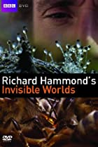 Image of Richard Hammond's Invisible Worlds