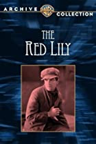 Image of The Red Lily