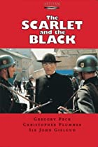 Image of The Scarlet and the Black