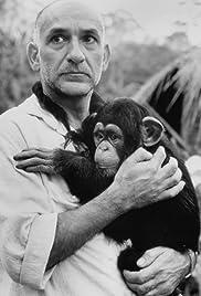 O Quinto Macaco Poster