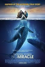 Big Miracle(2012)