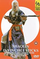 Image of Shaolin Invincible Sticks