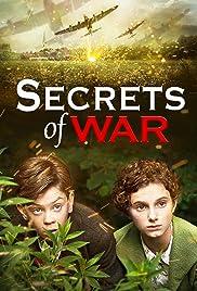 Oorlogsgeheimen Poster