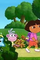 Image of Dora the Explorer: Star Catcher