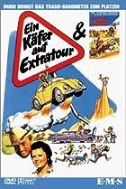 Image of Ein Käfer auf Extratour