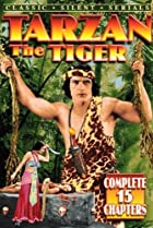 Image of Tarzan the Tiger