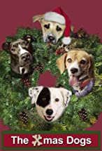Primary image for The Dogs of Winter