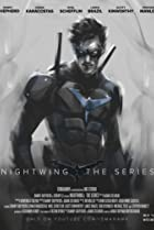 Image of Nightwing: The Series