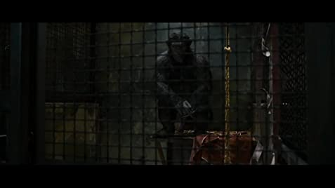 dawn of the planet of the apes full movie free  in hindi