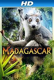 Madagascar 3D Poster