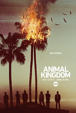 Animal Kingdom Lets Go Ape (2016–)