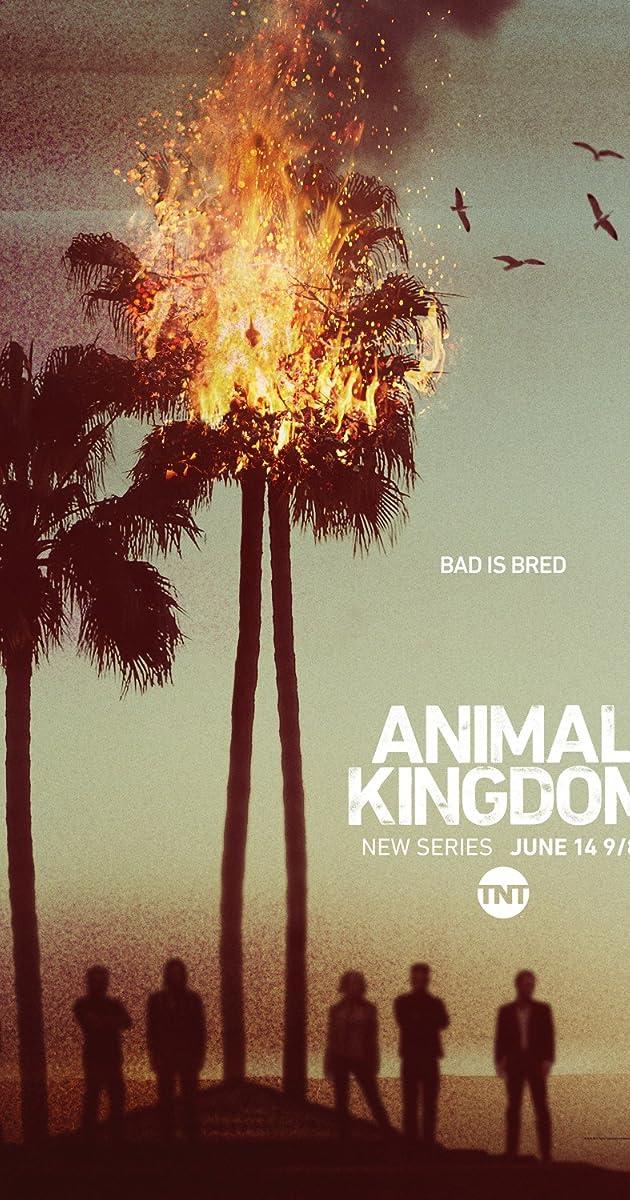 Animal Kingdom (TV Series 2016– )